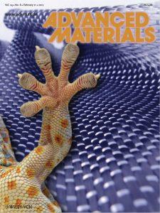 gecko-adv-mat-cover