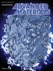 lmee-adv-mat-cover