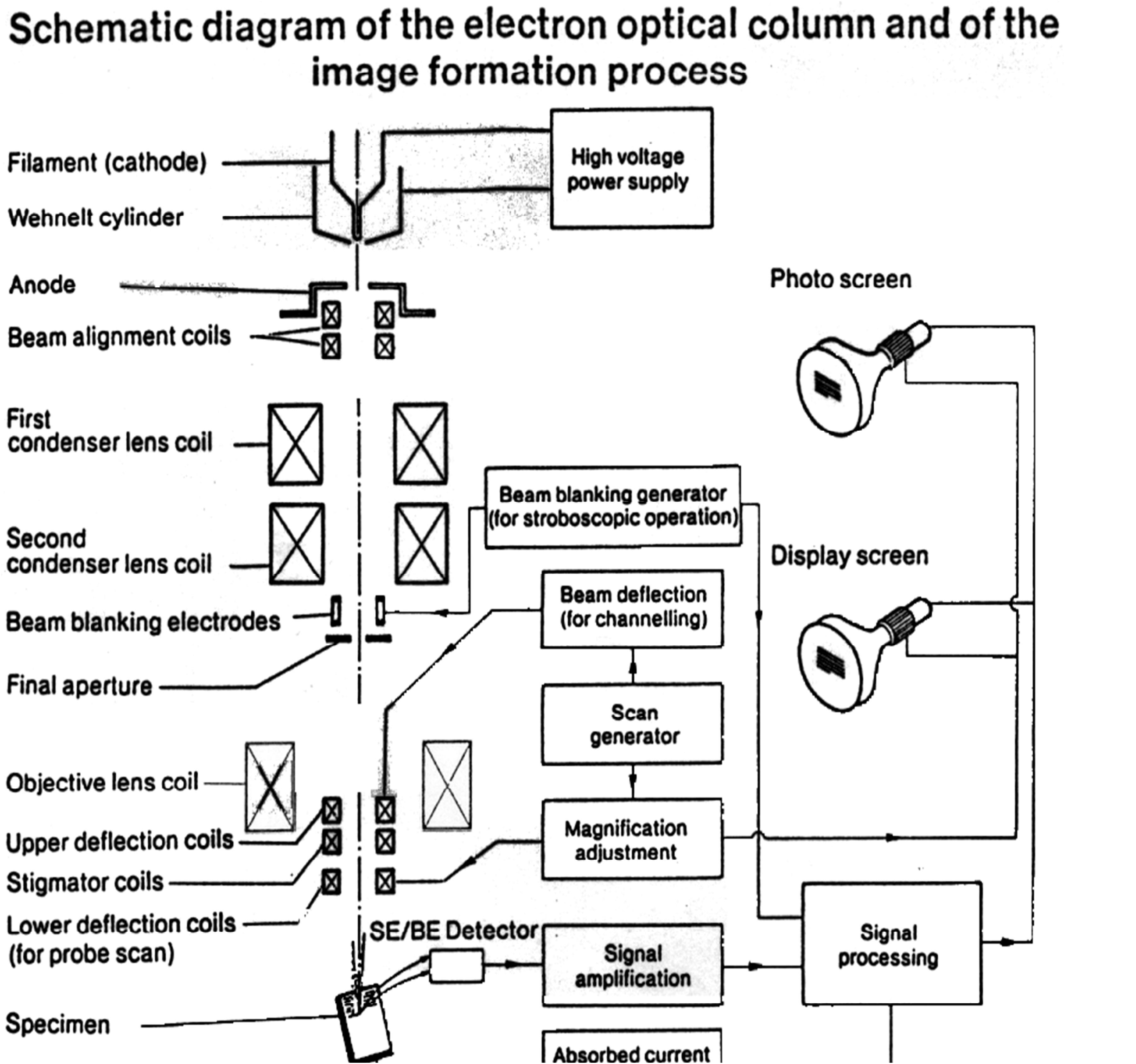 Electron Optical Column