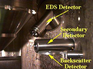 detectors3_tag