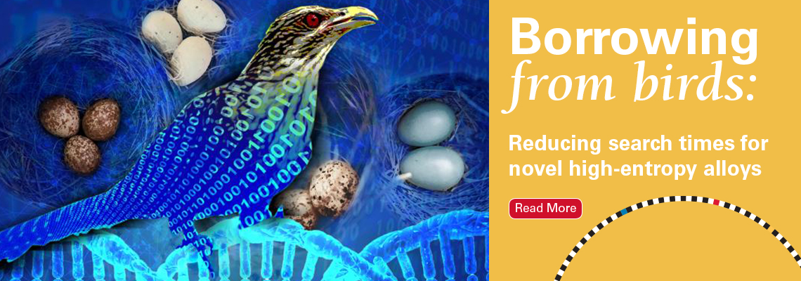 Borrowing from birds: Reducing search times for novel high-entropy alloys. Click to read more
